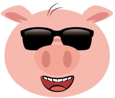 Pig with sunglasses